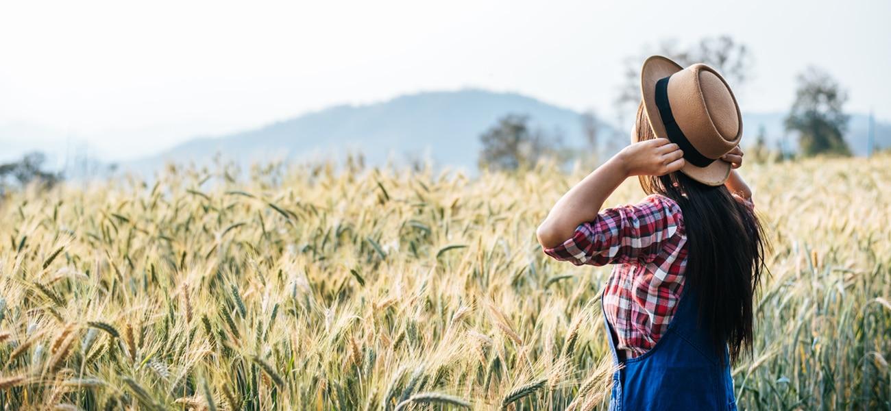 Le bilan de compétences pour les agriculteurs